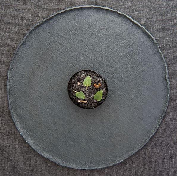 Restaurant terra-auener hof- michelinsterne- Heinrich Schneider-textpoterie-Porzellan